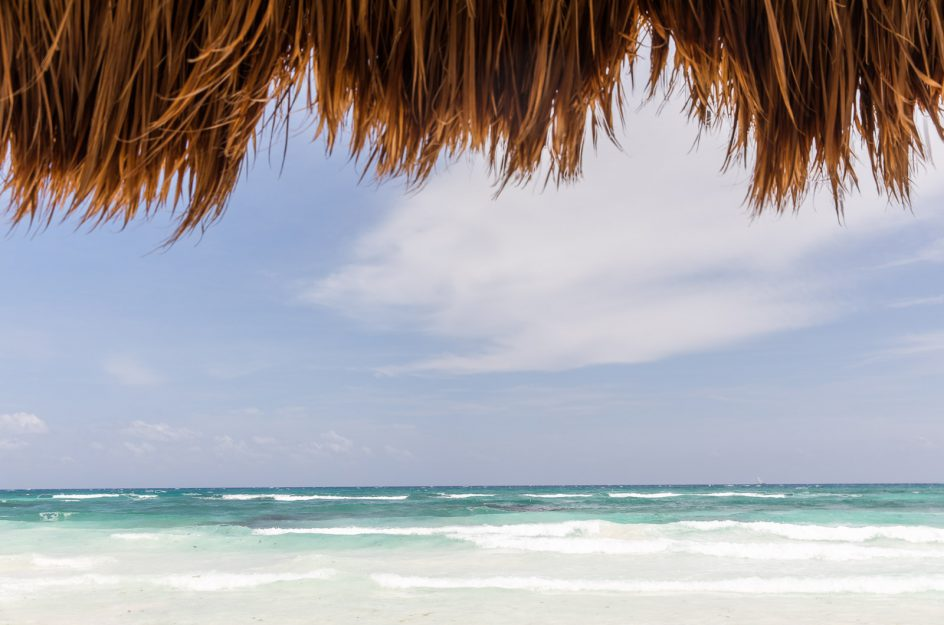 View from under palapa
