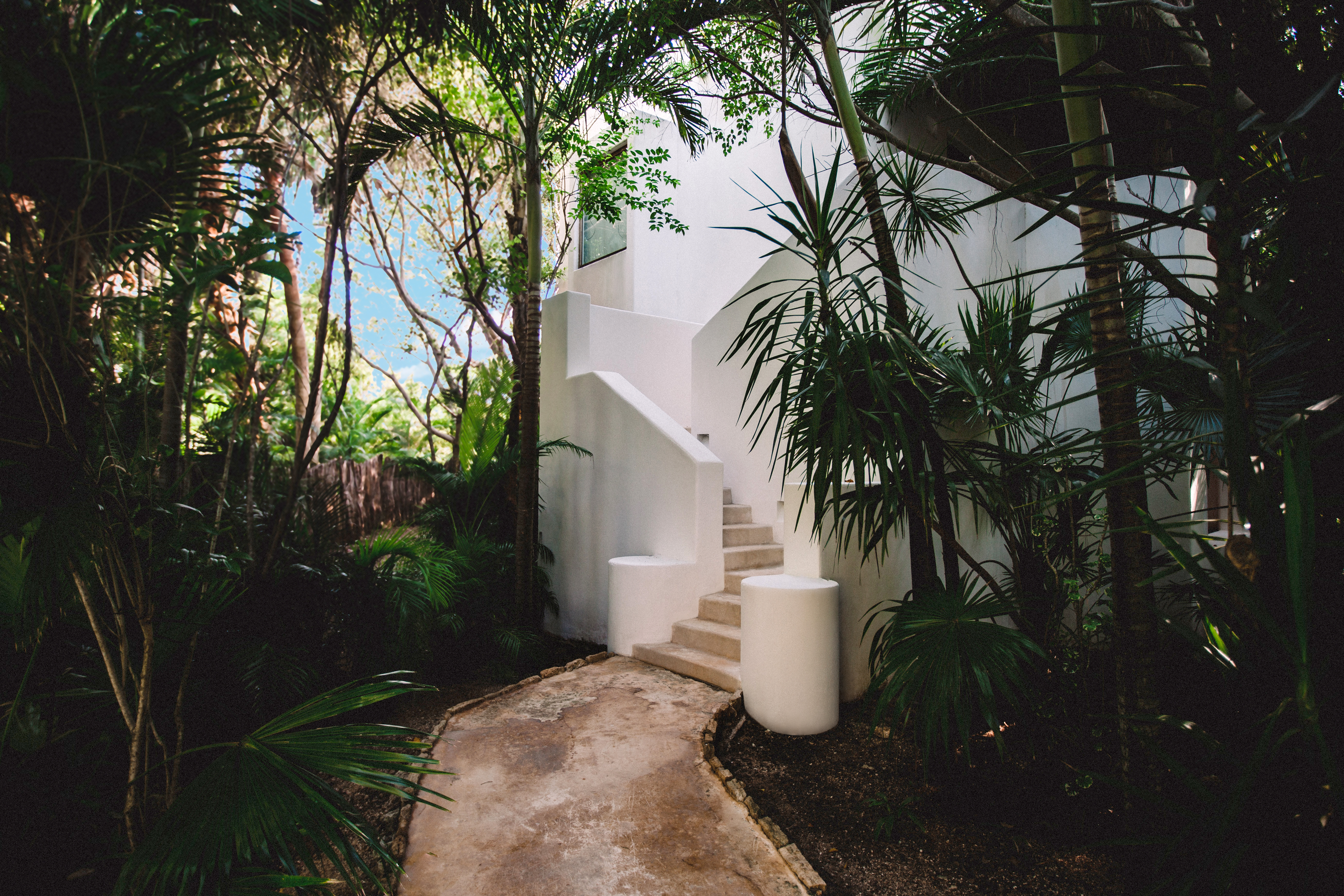 Jungle suite with plunge pool entrance